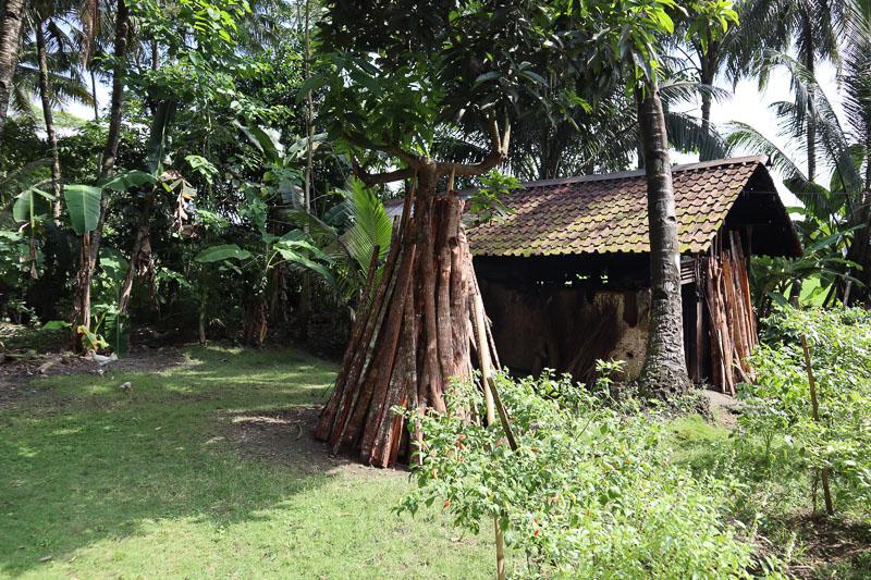 Maison fabrication sucre de coco