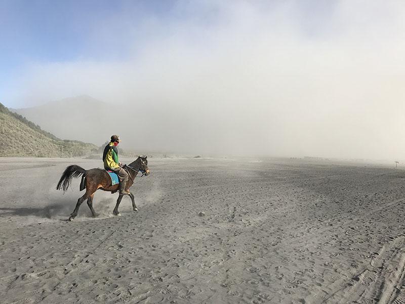 Cavalier dans le desert à Bromo