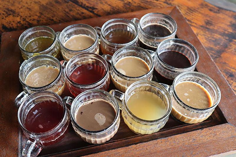 Dégustation de café Bali