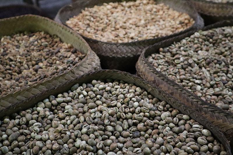 Graine de café séché Bali