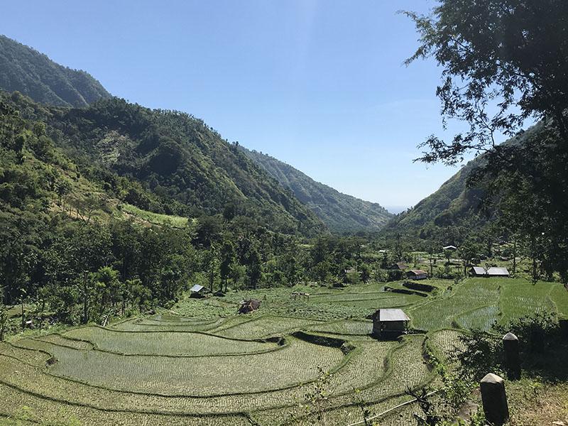riziere bangle amed bali