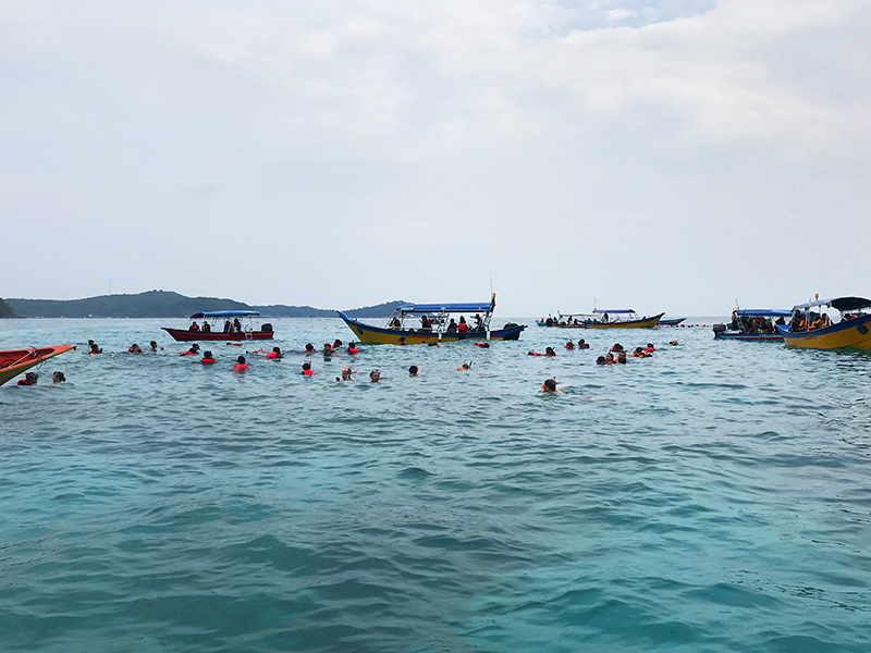 snorkeling turtle point